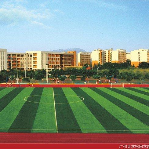 广州大学松田学院人造草坪