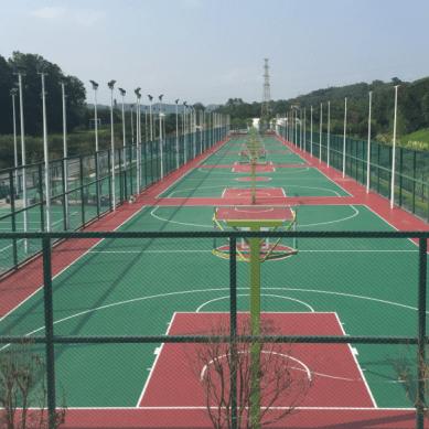 深圳罗湖体育公园硅PU球场