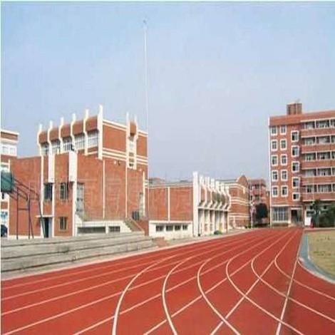 华师一附中深圳实验学校 300米透气式塑胶跑道工程